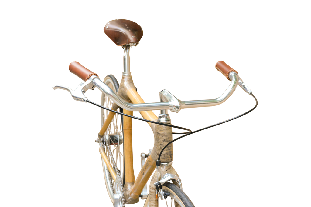 Retro bamboo bike