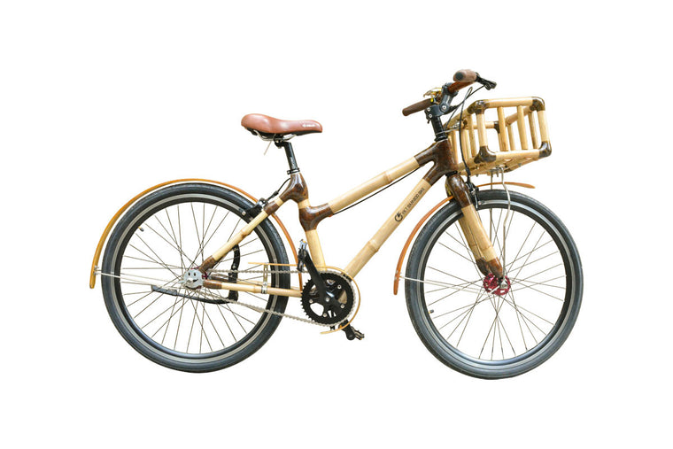 Classical  bike-model 1