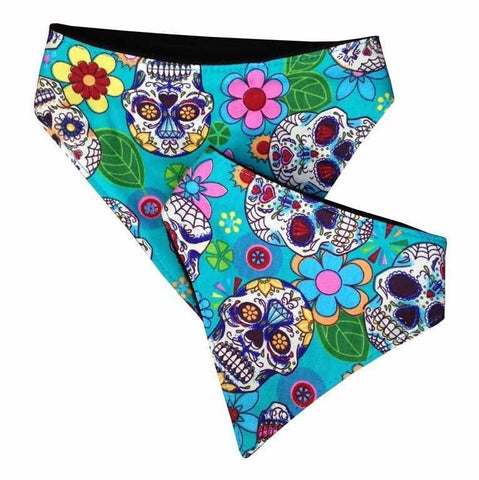 Two bright turquoise patterned dog bandanas with Day of the Dead skull designs