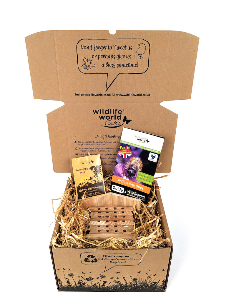 Bee Care Gift set - Wildlife World - Peach Perfect