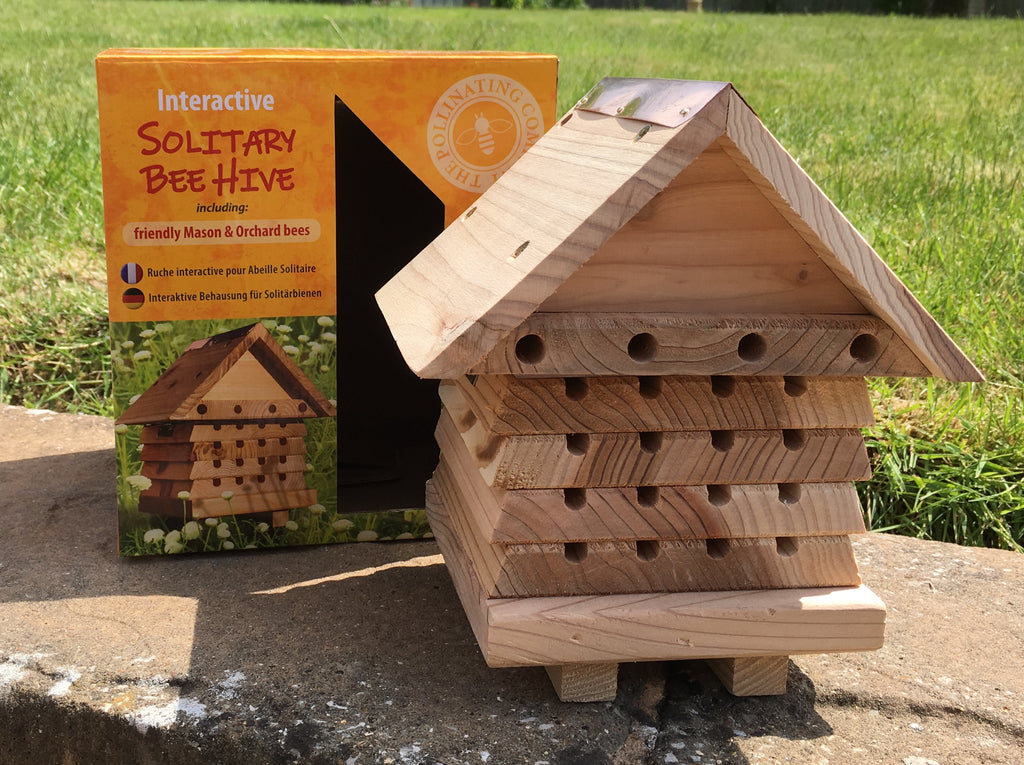 Interactive bee house by Wildlife World - Peach Perfect