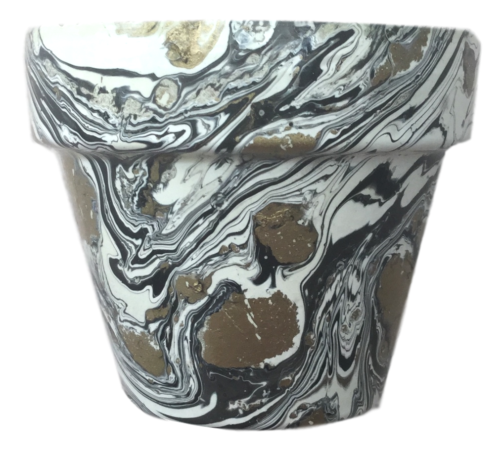 Decorated Cactus pot by Elemental Designware - Black & White - Peach Perfect