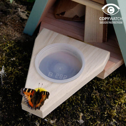 Butterfly Habitat by Wildlife World - feeding tray - Peach Perfect