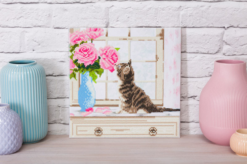 Crystal Art picture kit of a cat by Craft Buddy - Peach Perfect
