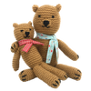 Teddies Knitting Kit by The Crafty Kit Company