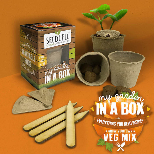 Seedcell vegetable garden in a box - Peach Perfect