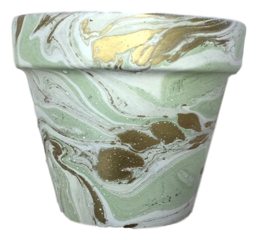 Decorated Cactus pot by Elemental Designware - Sage - Peach Perfect