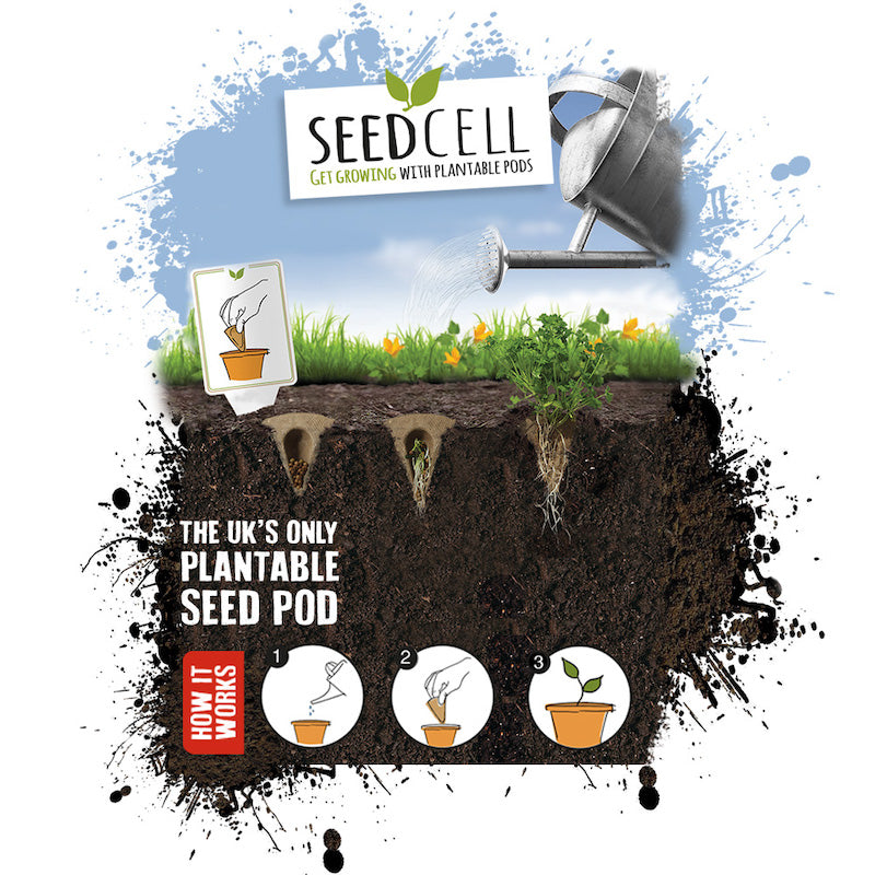 Seedcell vegetable garden in a box - how it works -  Peach Perfect