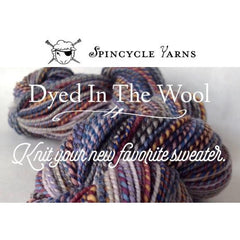 Spincycle Yarns - Dyed in the Wool  - 1