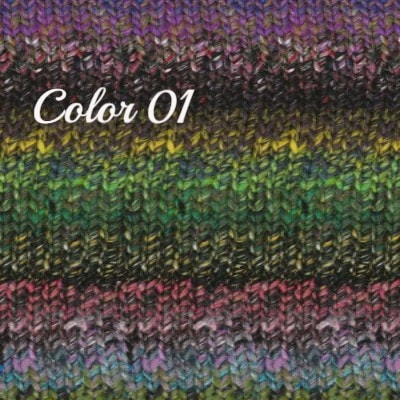 Noro Ginga Yarn Hunter Green Purple 01 - 2