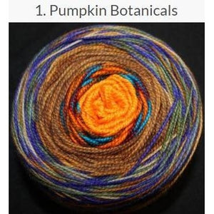 Done Roving Frolicking Feet Transitions Yarn Pumpkin Botanicals 1 - 2