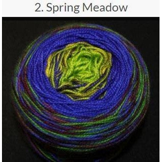 Done Roving Frolicking Feet Transitions Yarn Spring Meadow 2 - 3