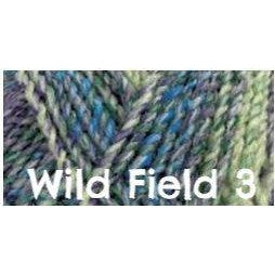 James C. Brett Marble Chunky Yarn-Yarn-Wild Field 3-
