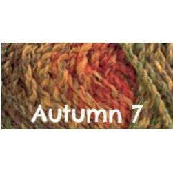 James C. Brett Marble Chunky Yarn Autumn 7 - 4
