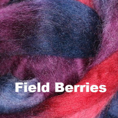 Louet Northern Lights Space Dyed Wool Tops (1/2 lb bags) Field Berries - 13
