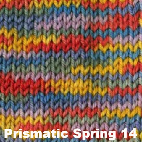 Ella Rae Cozy Soft Prints Yarn Prismatic Spring 14 - 13