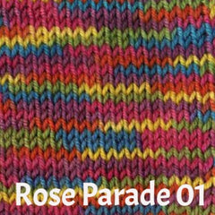 Ella Rae Cozy Soft Prints Yarn Rose Parade 01 - 2