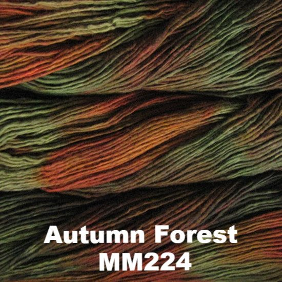 Malabrigo Worsted Yarn Variegated Autumn Forest MM224 - 20