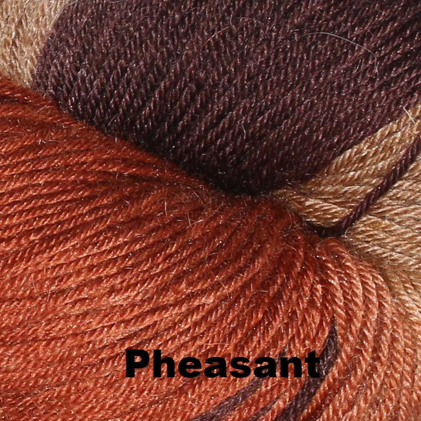 Paradise Fibers Yarn Rowan Fine Art Sock Yarn Pheasant 307 - 8
