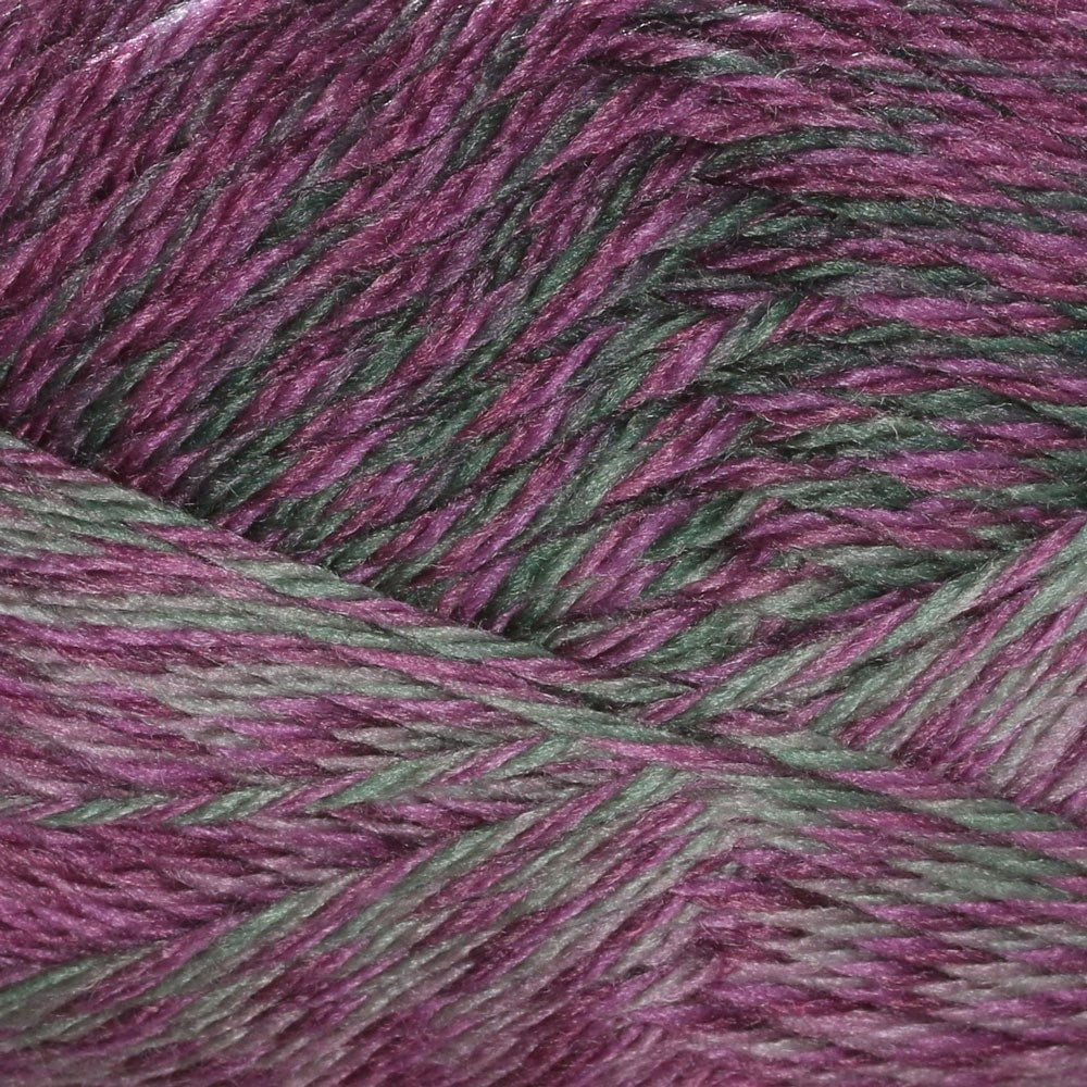 Cascade Pacific Color Wave Yarn Grapevine 318 - 10