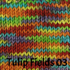 Ella Rae Cozy Soft Prints Yarn Tulip Fields 03 - 4