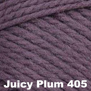 Brown Sheep Nature Spun Worsted Yarn-Yarn-Juicy Plum 405-