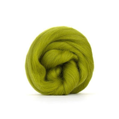 Paradise Fibers Solid Colored Merino Wool Top - Lichen