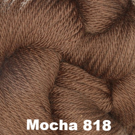 Cascade 220 Superwash Sport Yarn Mocha 818 - 10