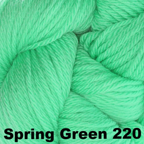 Cascade 220 Superwash Sport Yarn Spring Green 220 - 15