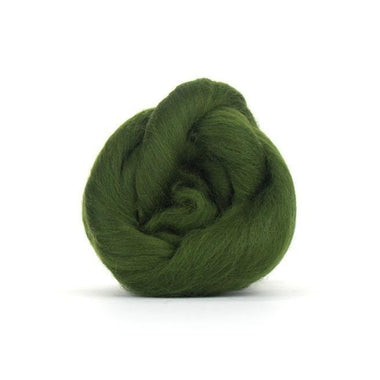 Paradise Fibers Solid Colored Merino Wool Top - Willow