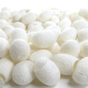 Paradise Fibers Cut Silk Cocoons (1 oz bag)  - 1