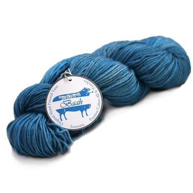 Baah Yarns Blue Paradise-Yarn-Baah Yarns-Paradise Fibers