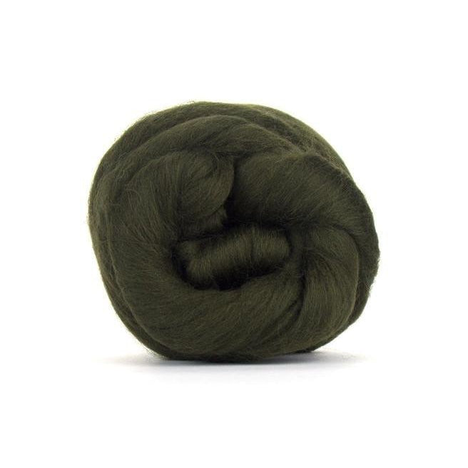 Paradise Fibers Solid Colored Merino Wool Top - Moss