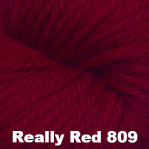 Cascade 220 Superwash Aran Yarn Really Red 809 - 13