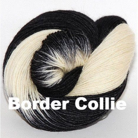 Paradise Fibers Yarn Ancient Arts DK Yarn - Woof Collection Border Collie - 6
