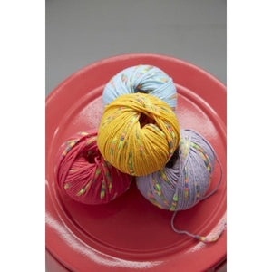 Conway + Bliss Lolli Yarn  - 13