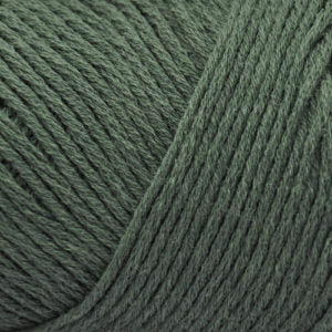 Brown Sheep Cotton Fine Yarn-Yarn-Jungle Green CW460-