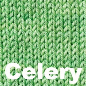 Sweet Georgia Tough Love Sock - Semi Solids-Yarn-Celery-