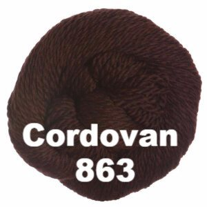 Cascade 128 Superwash Yarn Cordovan 863 - 38