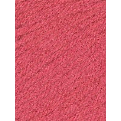 Paradise Fibers Euro Baby Babe Yarn - Watermelon