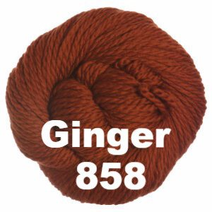 Cascade 128 Superwash Yarn Ginger 858 - 40