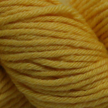Paradise Fibers Simplicity Superwash Yarn - Goldfish
