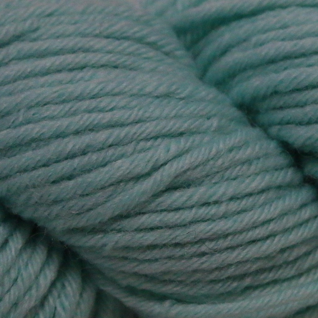Paradise Fibers Simplicity Superwash Yarn - Aqua Mint