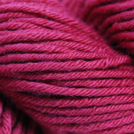 Paradise Fibers Simplicity Superwash Yarn - Schoolhouse Red