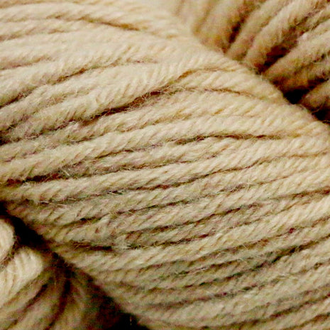 Paradise Fibers Simplicity Superwash Yarn - Sahara Sand