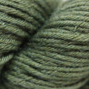 Paradise Fibers Simplicity Superwash Yarn - First Press Olive