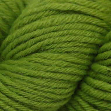 Paradise Fibers Simplicity Superwash Yarn - Green Apple