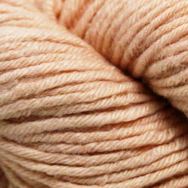 Paradise Fibers Simplicity Superwash Yarn - Karin's Birthday Suit