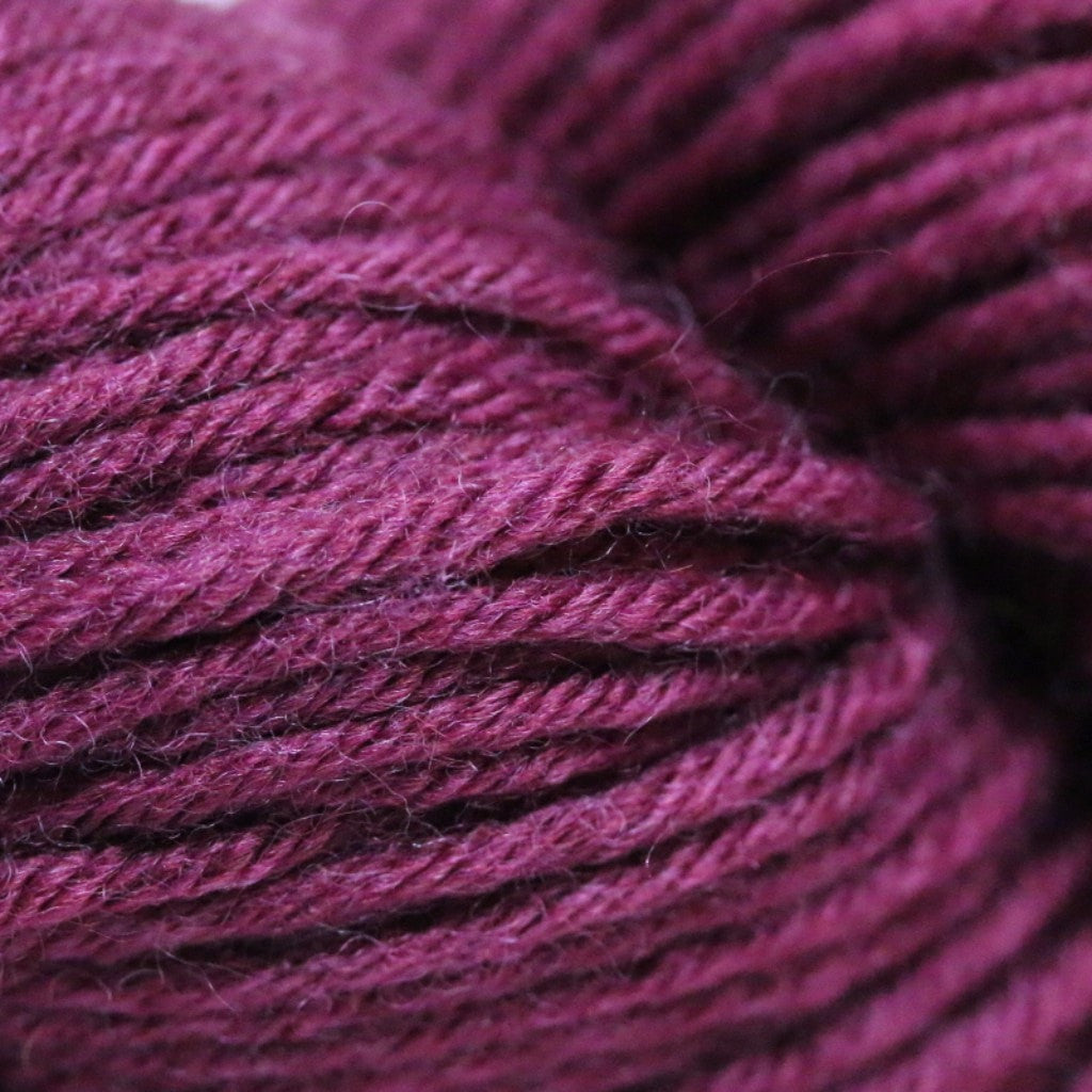 Paradise Fibers Simplicity Superwash Yarn - Edgy Eggplant