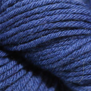 Paradise Fibers Simplicity Superwash Yarn - Raffi